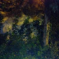 LISBOA, a photo by vítor