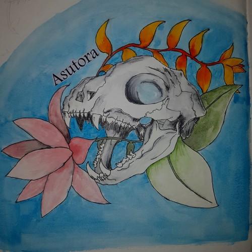 Skull , a painting by Asutora