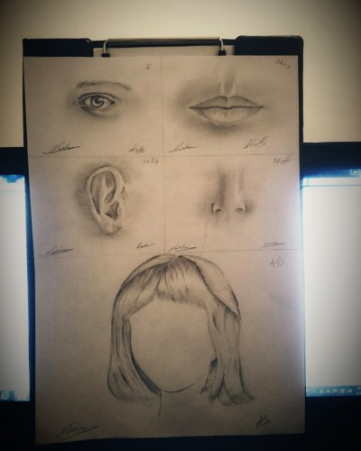 Face Puzzle, a drawing by Marean♕